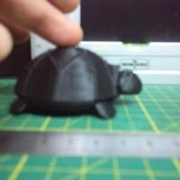 Черепаха ножки амортизируют